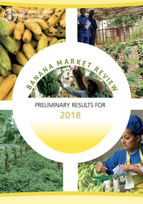 FAO Banana Market Review